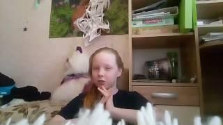Что делают домашние животные когда остаются дома одни