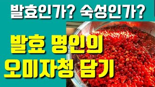 발효명인의 오미자청 만들기, 오미자청 발효인가? 숙성인…