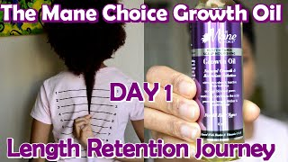 DAY 1: The Mane Choice Growth Oil | Length Retention Journey