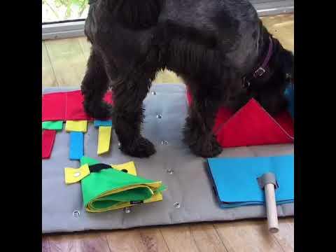 Buster Mat Demonstration Video