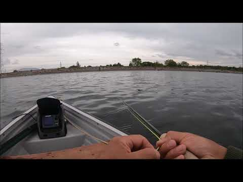 Fly Fishing With Buzzers On A Floating Line  Part 1