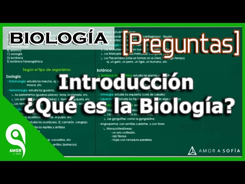 [preguntas-resueltas]-biología-│introducción-¿qué-es-la-biología?