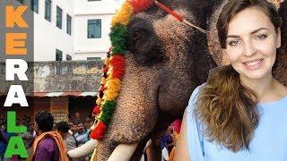 INCREDIBLE ELEPHANT FESTIVAL (Kerala, India)