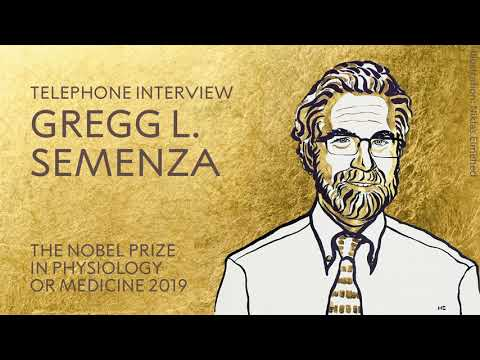 """Gregg L. Semenza: """"It's important to have people at the boundary between research and medicine."""""""