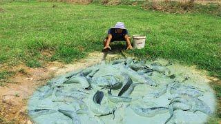 Amazing Traditional Fishing In Dry Season Fisherman Search Catfish Under Natural tyriq 1256