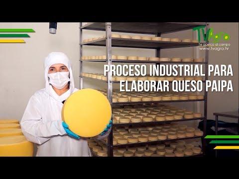 Proceso Industrial para Elaborar Queso Paipa - TvAgro por Juan Gonzalo Angel
