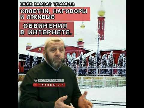 Шейх Хамзат Чумаков _ сплетни, наговоры и лживые обвинения в интернете. #кавказ #Назрань #малгобек