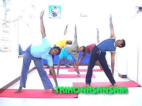 best Online Yoga Classes in Coimbatore