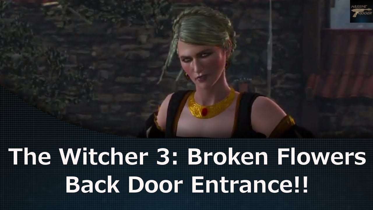 how to get skippoint back witcher 3