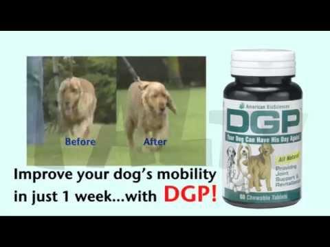 DGP For Pets Commercial