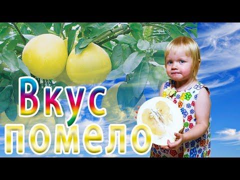 Самый Полезный и Экзотический фрукт для детей - ПОМЕЛО!