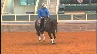 JACS GETTEN RIGHT AND PETER DEFREITAS AT THE 2013 CAROLINA FALL CLASSIC ABI FUTURITY