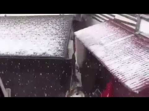Осенняя зима: в Сочи выпал первый снег