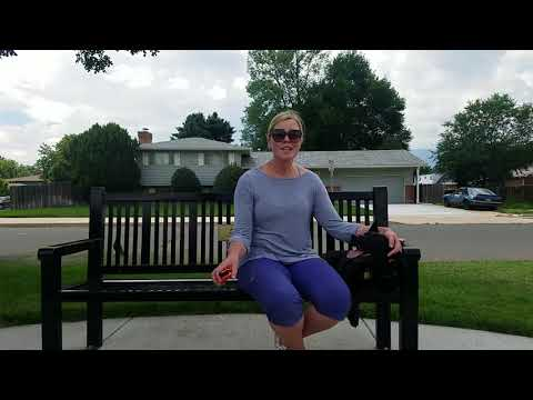 Best Basenji Dog Trainers in Colorado Springs. Owner Testimonial - Hachi