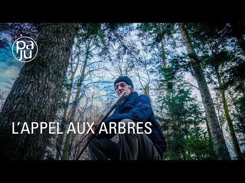 Video: approche sensible des forêts avec Ernst Zurcher