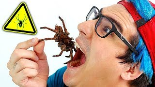 EATING DANGEROUS TARANTULA (POISONOUS)