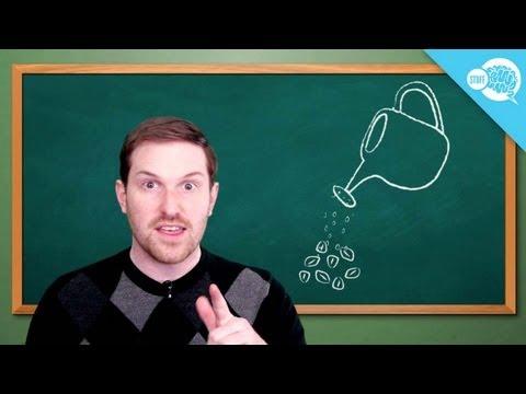 How Do You Decaffeinate Coffee and Tea?