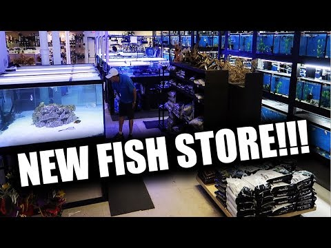 NEW AQUARIUM STORE!