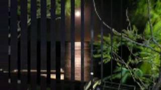 Video Aldo Junior   A noite passada