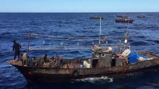 В Находке допрашивают браконьеров из Северной Кореи, которые напали на российских пограничников.