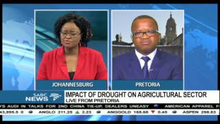 The impact of drought in the agricultural sector: Wandile Sihlobo