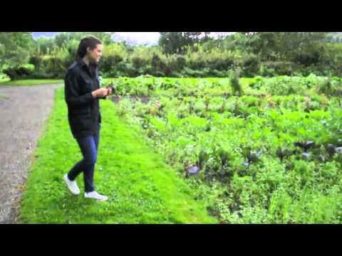 Edible Garden of Norway