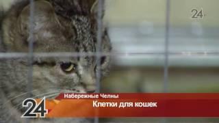 В челнинских многоэтажках начали устанавливать клетки для кошек