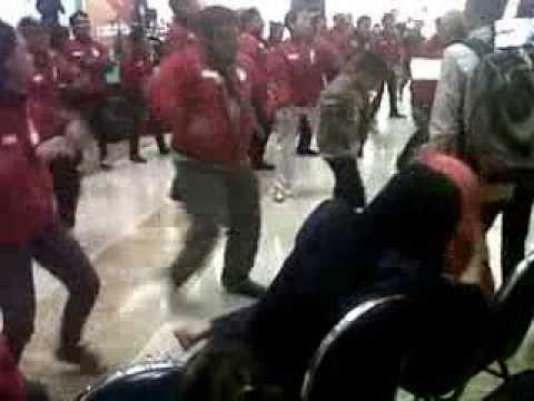 Caesar Dance Ery Panda HVIC