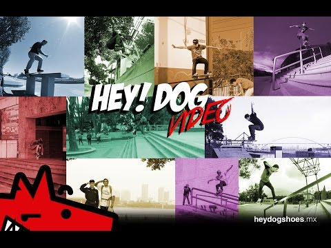 HEY! DOG VIDEO 2016