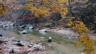 #바람에실려 #제천여행 #테마여행 #월악산국립공원 #제…