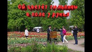 Литва, гости из Москвы. Сезон 2. Усадьба Бурбишкис, праздник цветения тюльпанов.