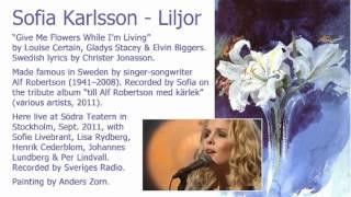 Sofia Karlsson - Liljor (Audio only, live, Södra Teatern, 2011)