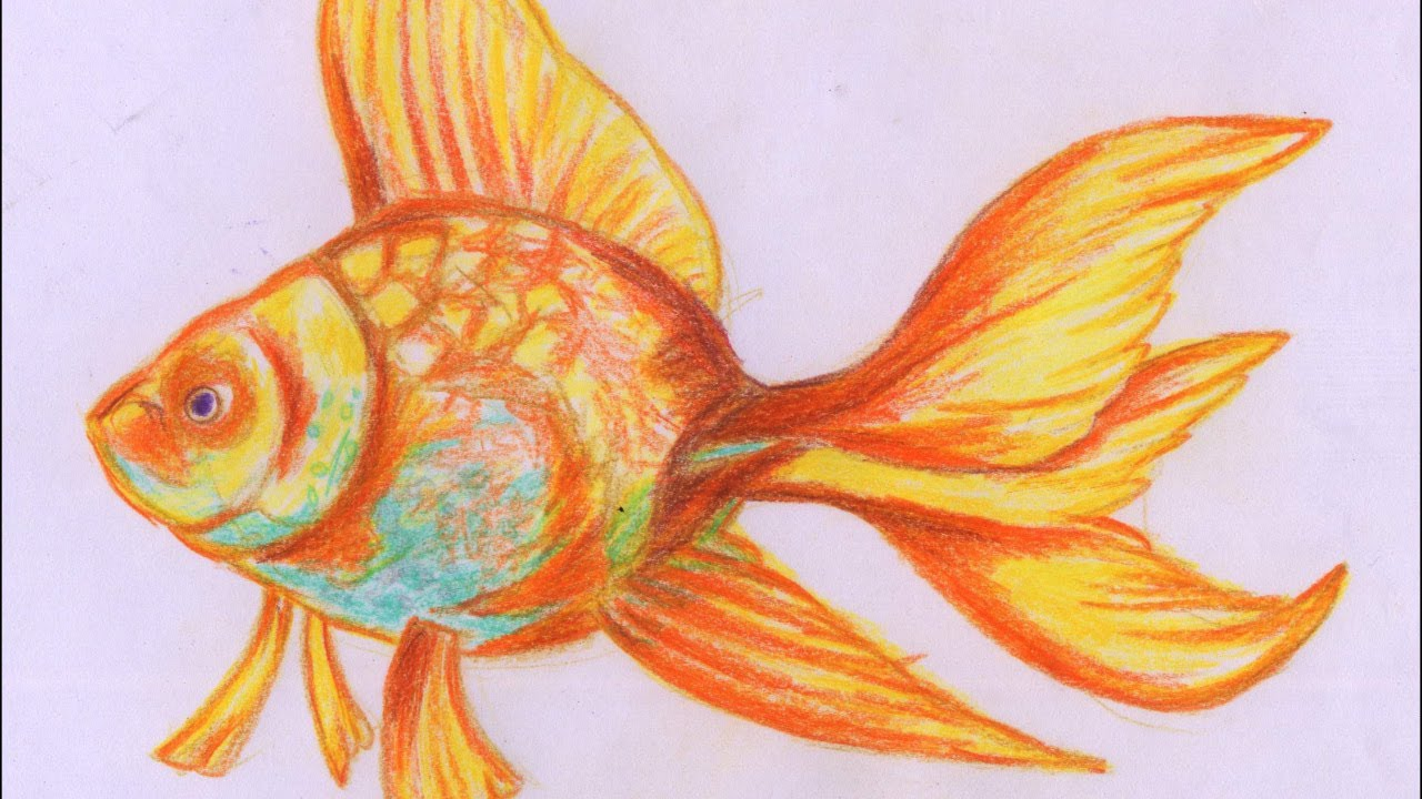 Beautiful fish painting speed painting for beginners for How to paint a fish