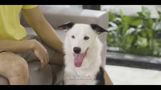 Loa thông minh Milo điều khiển thiết bị trong nhà bằng giọng nói Việt mọi miền