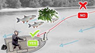 Ловля ЖЕРЕХА НА СПИННИНГ летом рыбалка в Беларуси 2021