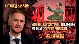 «Всеобщее процветание»:  Новая Культурная революция или социализм Си Цзиньпина?(Evergrande)  Вавилов