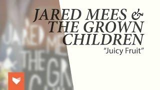 """Jared Mees & The Grown Children - """"Juicy Fruit"""""""
