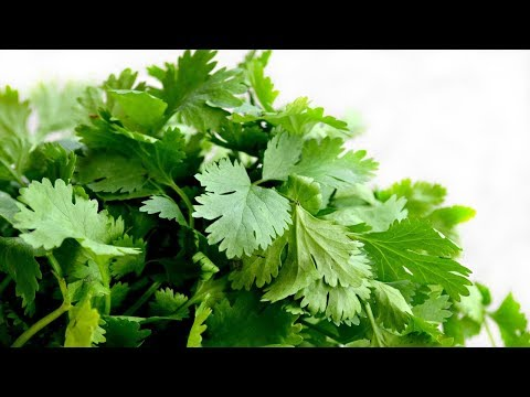 Why Should You Eat More Parsley