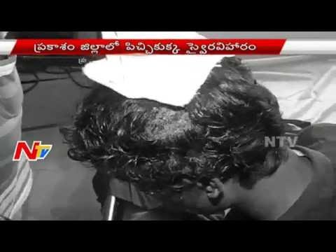 Mad Dog Charges 15 People In Prakasam District | NTV
