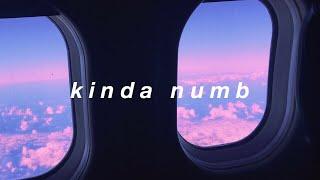 kinda numb || Tate McRae Lyrics