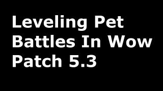 Leveling Pet Battles 2 - Wow Patch 5.3 (Lil Ragnaros, Corefire Imp & Clockwork Gnome)