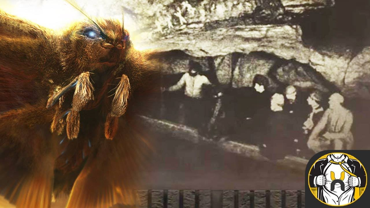 Monarch Mothra Teaser BREAKDOWN | Godzilla: King of the Monsters