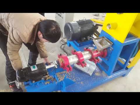 Working Video Of DGP 80 Fish Feed Machine Vic