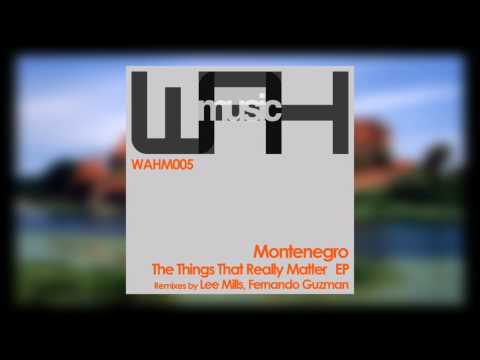 Montenegro - The Things That Really Matter (Original Mix) [We Are Here Music]