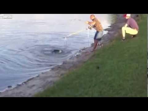 Câu cá , câu phải cá sấu