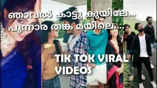ഞാവൽ ചോല കുയിലേ....പുന്നാര തങ്ക മയിലെ...  New tiktok trend song... Cute Videos...