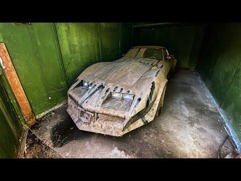 Откопали гараж спустя