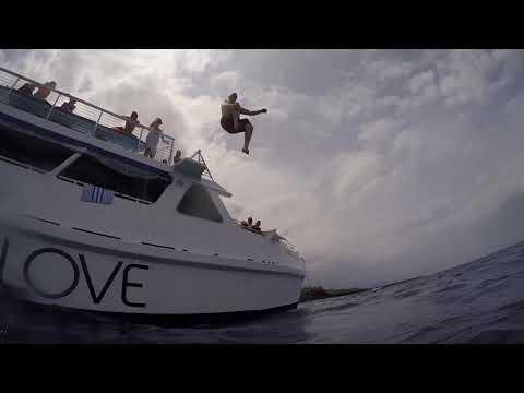 Kona Hawaii Body Glove Snorkel And Dolphin Adventure