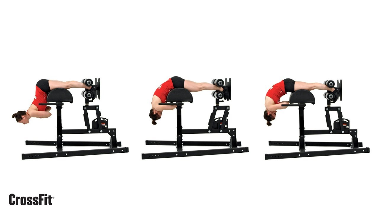 ejercicios espalda baja gym mujer