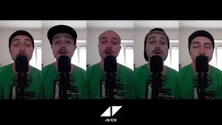 Wake Me Up - Tribute to Avicii (Home Free Cover)